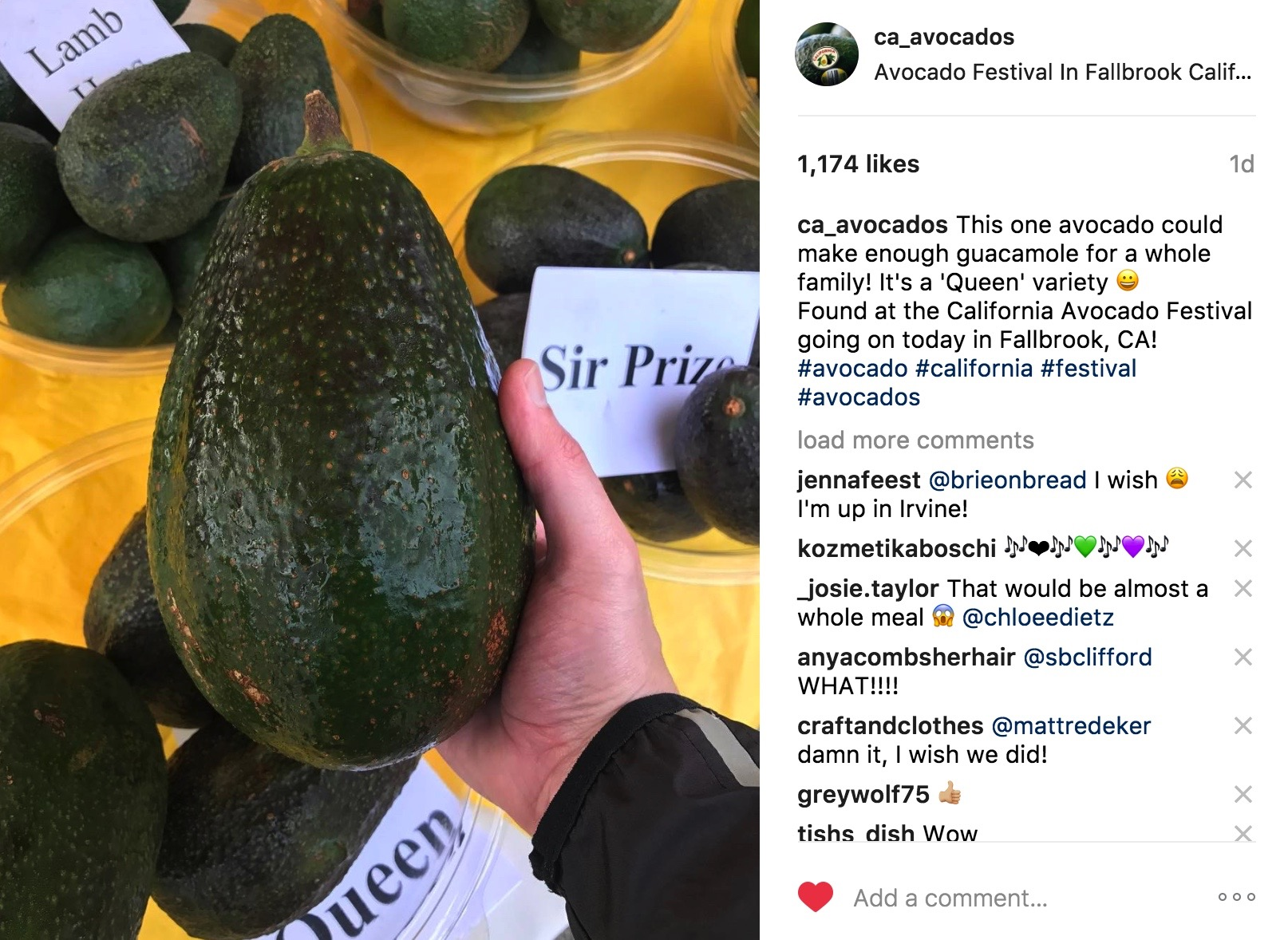 As part of its Instagram story, CAC shared a photo of this 'Queen' variety avocado as seen at the Sunshine Properties booth.