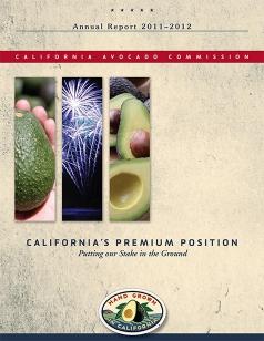 2012 CAC Annual Report