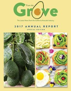 2017 CAC Annual Report