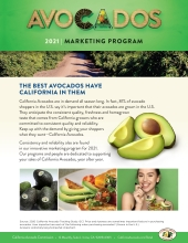 The introductory page of the 2021 California Avocado Marketing Program materials.