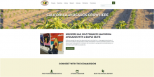 The redesigned California avocado grower website showcases the Commission's new corporate brand colors and logo.