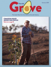 The Summer 2019 issue of From the Grove is now available online.