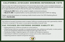 Referendum ballots will be mailed to eligible California avocado commercial producers on February 15, 2021 and must be postmarked and sent to CDFA for tallying by March 16, 2021.