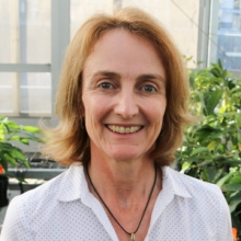 Dr. Liz Dann has worked extensively on avocado diseases in Australia.