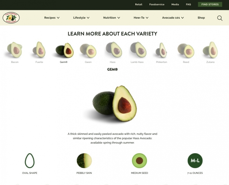 The Commission has added GEM® to its popular avocado variety browser as the varietal becomes more popular in groves and with customers.