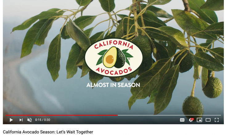 "The ""Waiting Together"" pre-roll videos showcased a picturesque California avocado grove."