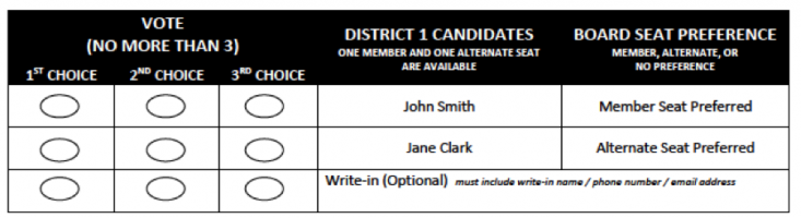 An example of the CAC 2019 General Election Ballot's ranked voting block.