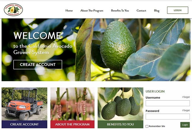 The California avocado Decision Support Tools are designed to help California avocado growers make decisions concerning fertilization and irrigation to help them maximize yield.