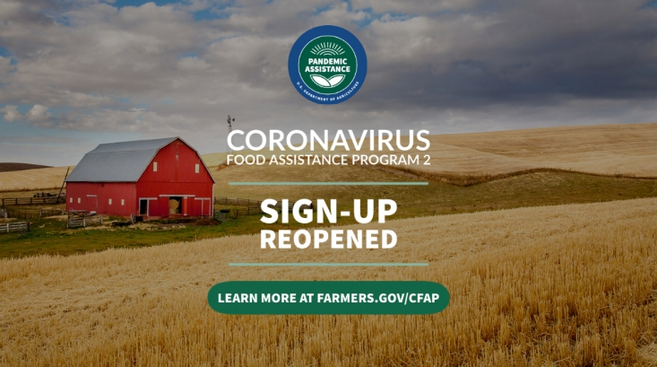 The USDA announced it is establishing the USDA Pandemic Assistance for Producers program to help bring financial assistance to a broader set of producers than in previous COVID aid programs.