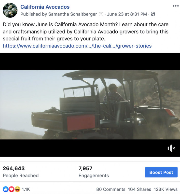 California avocado grower videos performed well across CAC's social media channels.