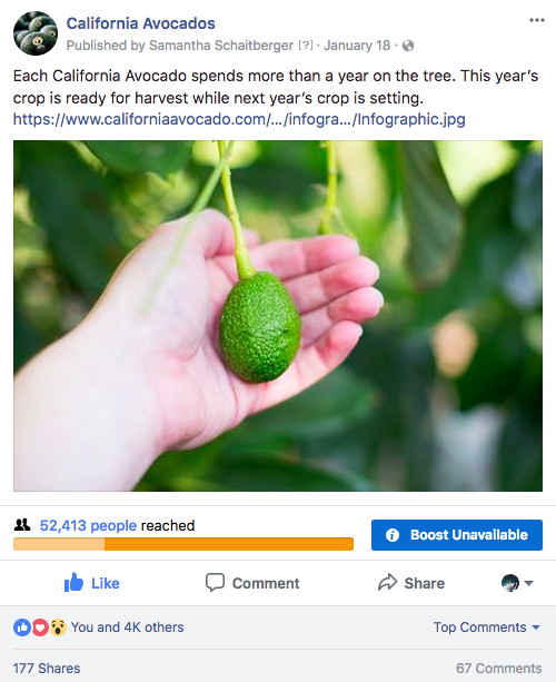 Posts such as this one educated fans about the two-year California avocado growing season while informing fans the fruit would arrive shortly in their local stores.