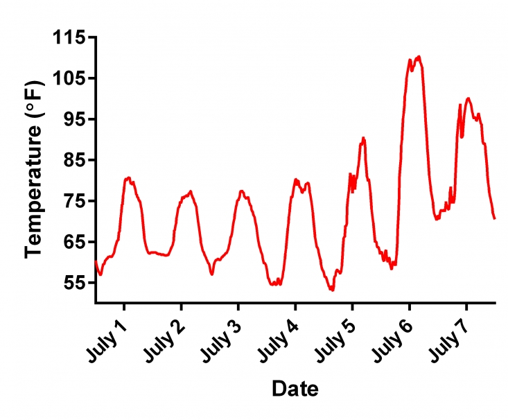 A graph showing the daily high temperatures at Pine Tree Ranch, Santa Paula, leading up to the heatwave on July 6. Note that daily high temperatures were at or below 80 °F most days leading up to the heatwave when the high temperature spiked by more than