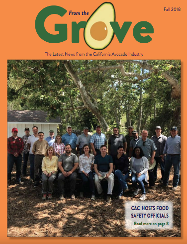 Fall 2018 From the Grove
