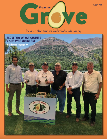 The Fall 2019 issue of From the Grove is now available online.