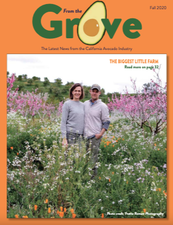 The Fall 2020 issue of From the Grove is now available online.