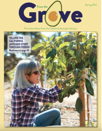 The Spring 2021 issue of From the Grove, a quarterly publication of the California Avocado Commission, is now available online.