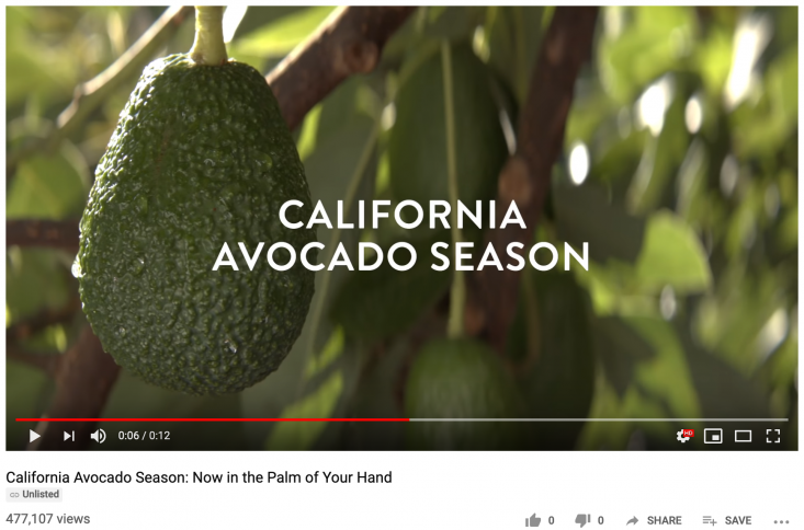 Promoted pre-roll ad units on YouTube drove California avocado brand awareness and generated excitement for the 2019 season.