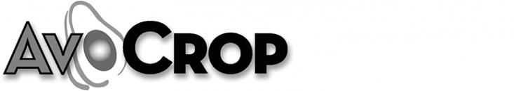 AvoCrop