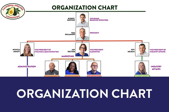 CAC Org Chart